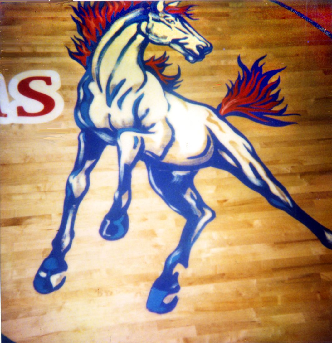 West Jessamine Colts horse  Gym Floor Painting, Flying Armadillo Signs, Mike Burrell, FASCO