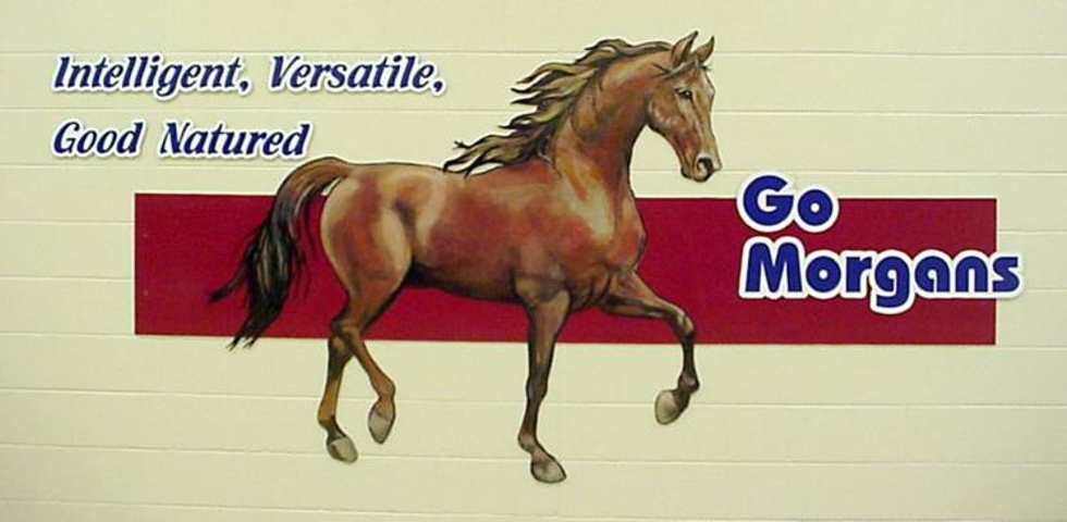 Morgans Horse School Painting, Flying Armadillo Signs, Mike Burrell, FASCO